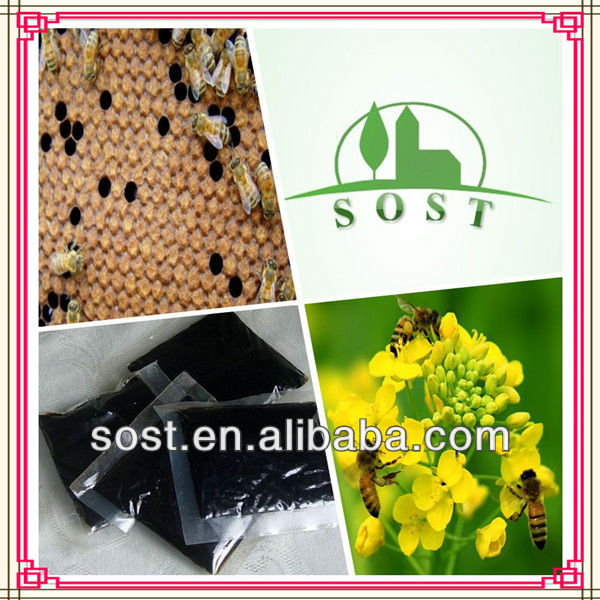Pure Extract Powder Bee Propolis