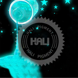 17 Color Luminous Nail Polish Powder Glow In The Dark Glow Powder Photoluminescent Dust Luminous Pigment Fluorescent Powder