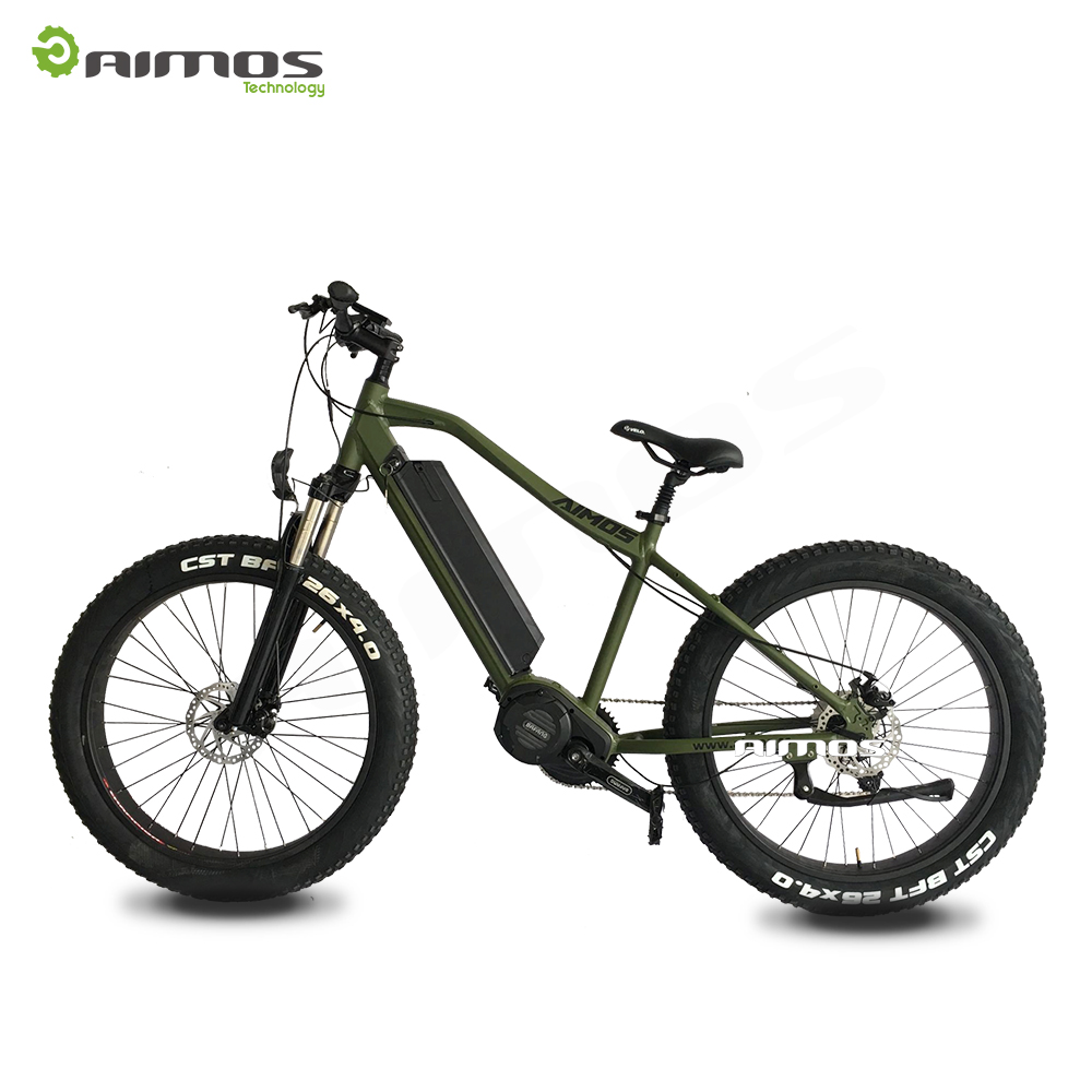 AMS-TDE-08B New Bafang Ultra 1000w mid motor electric bike