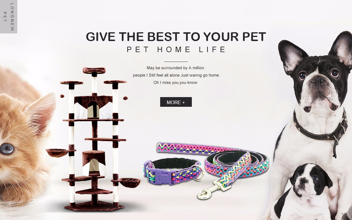 Pet Products Qualified Cat Teaser Ball Feather Pet Dog Puppy Kitten Colorful Squeaky Chew Play Intelligent Interactive Toys Cat Toys