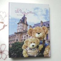 china supplier high quality photo album for lovers RYX