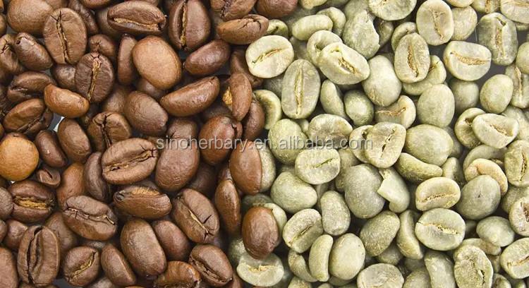 High Germination Arabica Coffee Seeds For Planting