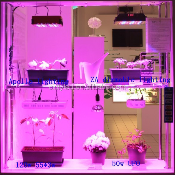 Indoor Plant Grow Light System Kit Greenhouse Garden Growing Lamp Stand Seeds