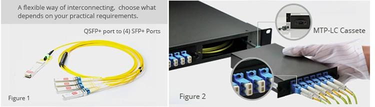 12 Core 24 Core Singlemode Multimode MTP MPO-LC/SC/FC/ST4