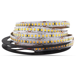 Led Strip 2835 DC 12V 24V Indoor Waterproof 120 Leds/M Flexible Led Light