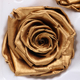2017 new design gold plated roses preserving flowers