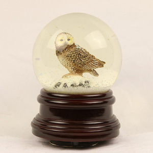Custom made eagle snow globe, Water globe