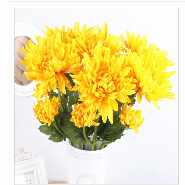 Цветы хризантемы купить оптом