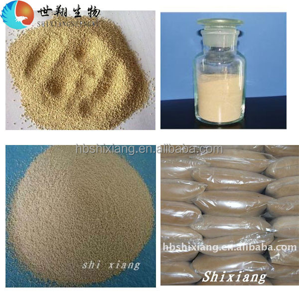high protein fish feed additives Brewers Yeast Powder