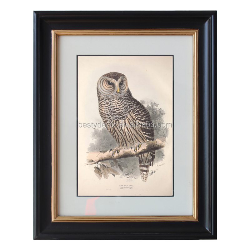 Barred Owl Old Painting Picture Frame Paneling Wall - Buy Painting ...