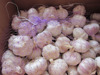 chinese products wholesale garlic 2015 crop