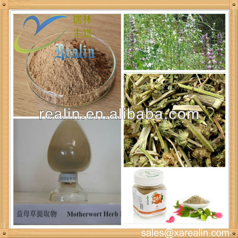 High quality motherwort herb p.e. active ingredients natural Leonurine