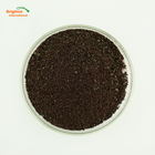 Rich in Protein And Dietary Fiber Purple Sweet Potato Extract Powder