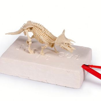 3d Dino Fossil Bones Skeleton Bones Model Dinosaur Digging Toys// - Buy  Dinosaur Digging Toys,Skeleton Bones Model,Excavation Kit Toy For Kids  Product