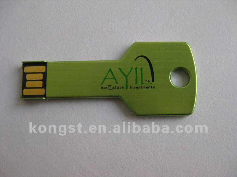 Flash disk on key with logo