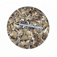 Natural and Health Food Dried Oyster Mushroom