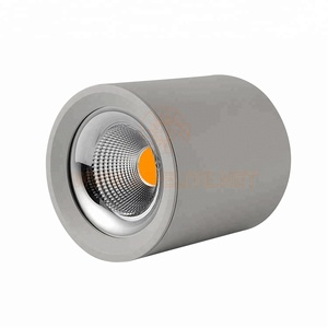 IN-DL209 High Power Mirror Reflector Airport Station Round Surface Mounted COB 10W 15W 20W 30W 40W 50W Pendant LED Downlight