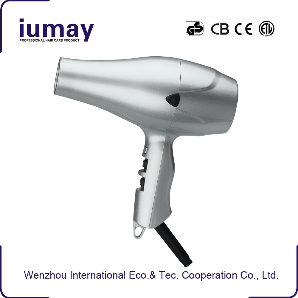 Professional dual voltage hair dryer dc motor elite hair for Dc motor hair dryer