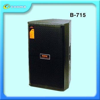 Professional Speaker (b-715)