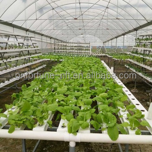 Outlet PVC Pipes for Greenhouse Cultivation NFT Hydroponic System