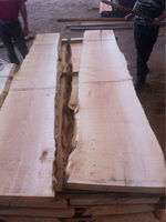 European Sycamore / Maple Lumber