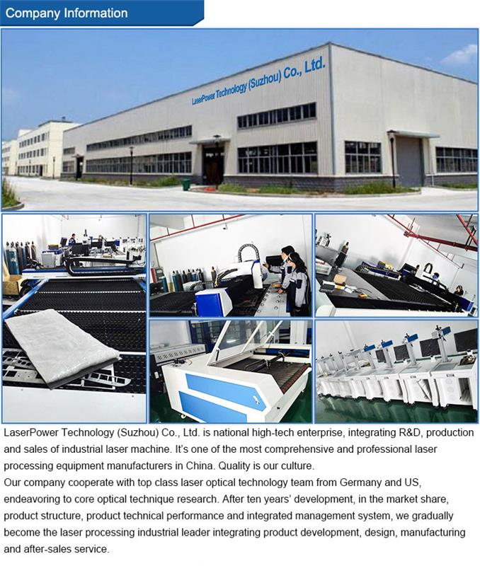 Economical Gantry Type Carbon Steel Cutting CNC Fiber Metal Laser Cutting Machine For Sheet Metal Industry