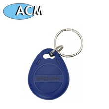 EM4102 Key Tag / 125KHz Contactless RFID Key Fob (Special Offer from 13-Year Gold Supplier)