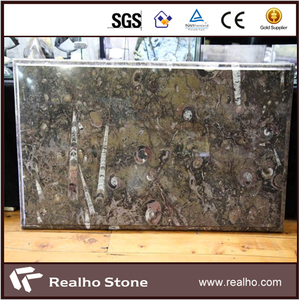 Exotic Luxury Fossil Brown Marble Stone Slabs