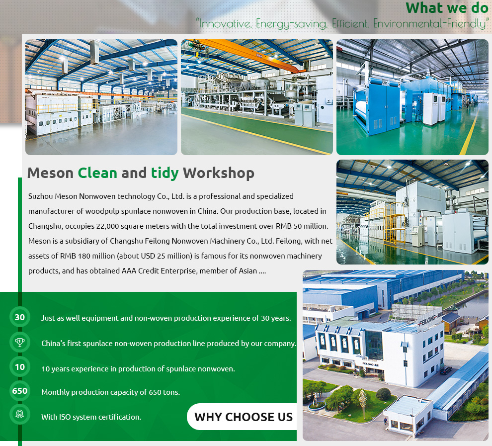 Suzhou Meson Nonwoven Technology Co , Ltd  - Wood Pulp Spunlace