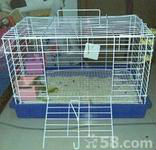 rabbit cage with feeding trough