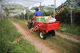 13HP Honda engine tractor with Utility Trailer