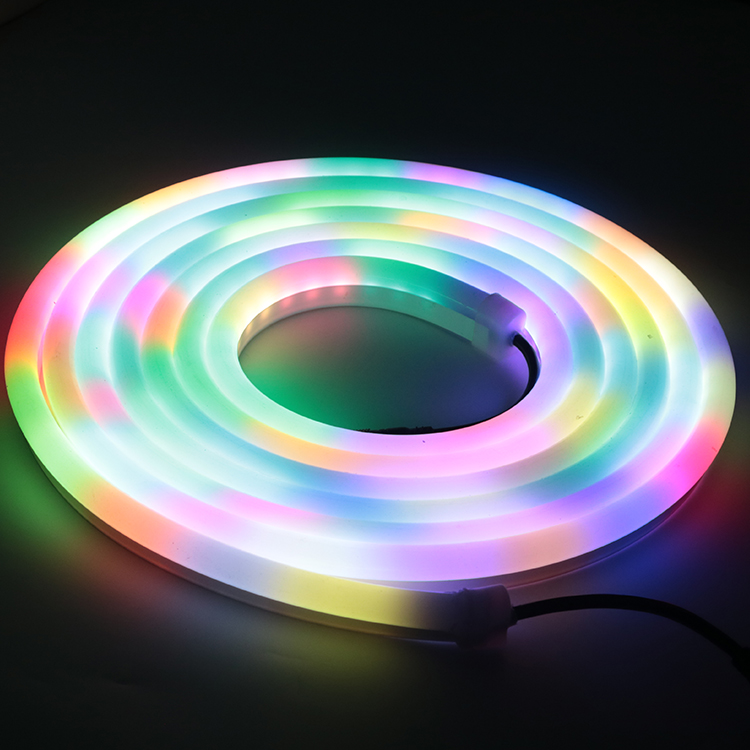 Perdagangan Jaminan IP68 DC12V 24 V Ucs1903 Ws2811 DMX Kolam RGB Digital Neon LED Flexible Strip