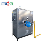 Small automatic steam generator 300kg natural gas steam generator