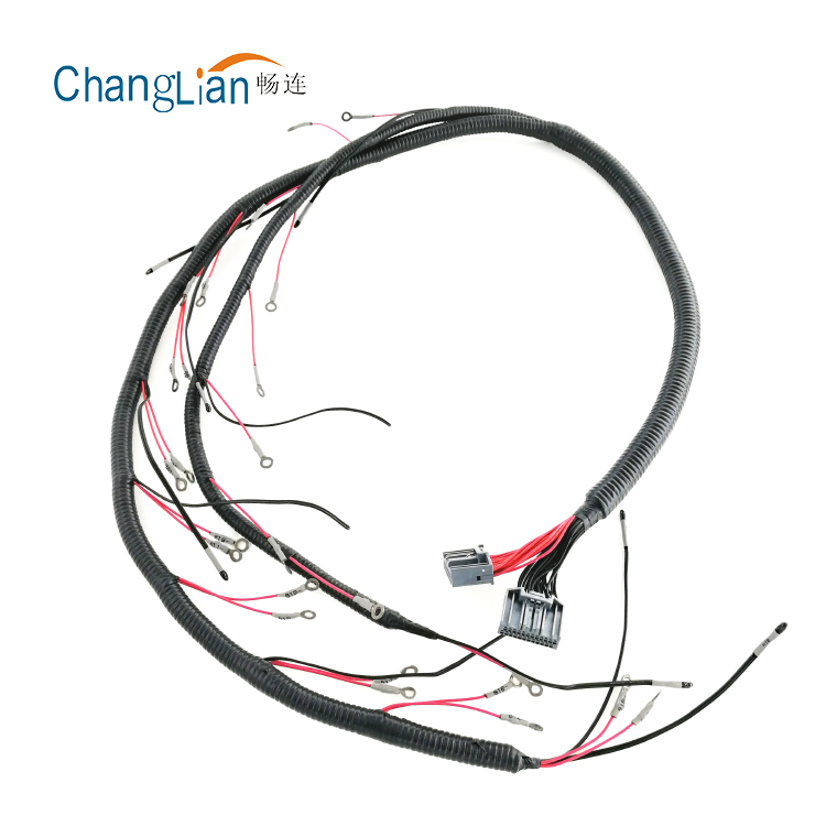 Gm  U0026 39 97 T56 Standalone Wiring Harness Dbc Camaro