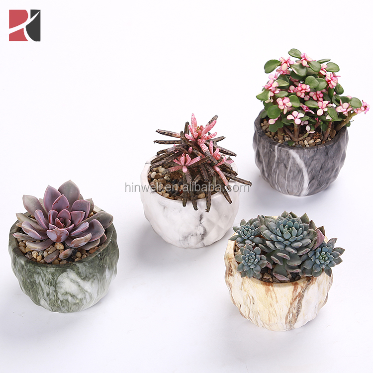 Wholesale Cute Desktop Decor Mini Ceramic marbling Flower Pot Succulent Plant Pots