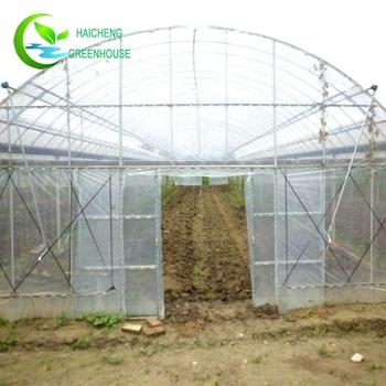 Sistem Tumbuh Film Plastik Hidroponik Rumah Kaca Untuk Jamur Buy Hidroponik Rumah Kaca Rumah Kaca Untuk Jamur Rumah Kaca Plastik Product On
