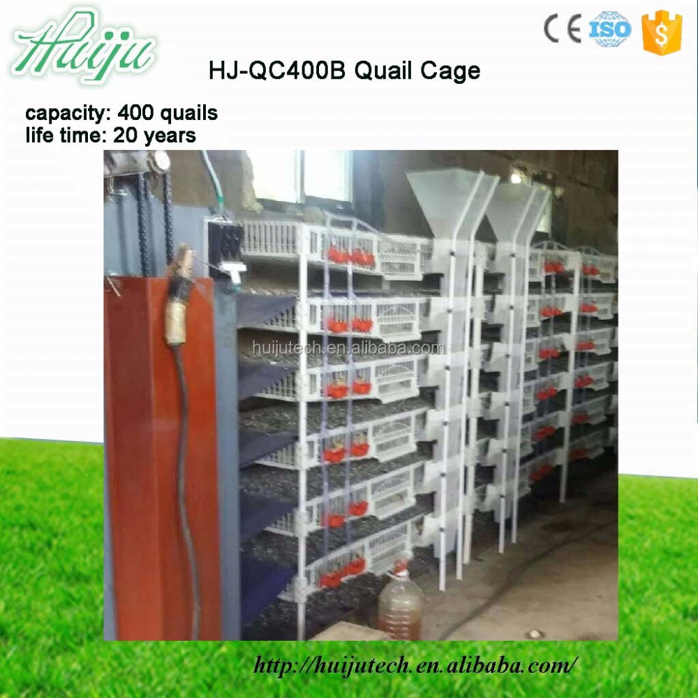long life top-class automatic used poultry quail layer cages for sale HJ-QC400B