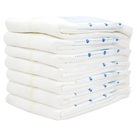 Disposable Adult Daily Diapers Manufacturer For Elderly Free Sample Ultra Thin