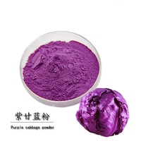 Bulk supply Red cabbage extract pigment food grade for sale