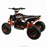 800W Kid Electric Mini ATV Cheap for Sale