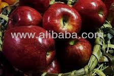 fresh and red apple