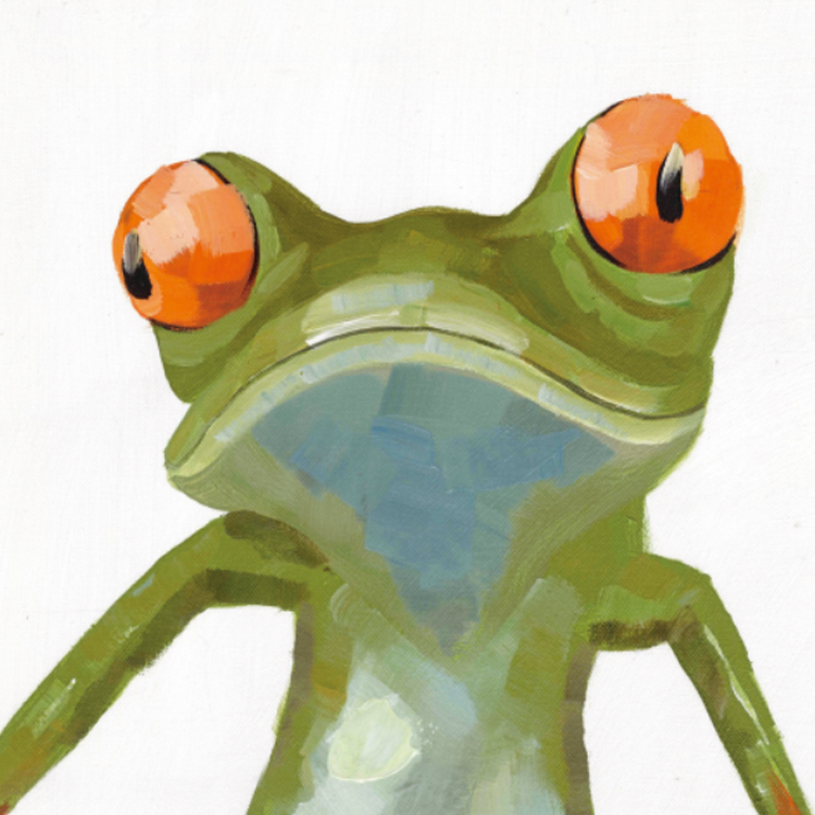 Prints Wall art unique gift home decoration 40x50cm abstract animals oil paintings frog art canvas painting