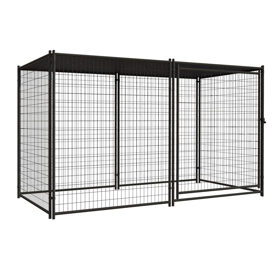 black dog kennel