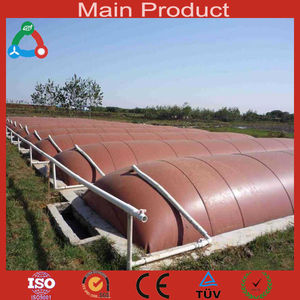China Economic high efficient household plastic portable digester biogas plant methane biogas reactor