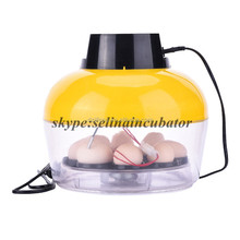 Hold 8 chicken eggs automatic chicken egg mini incubator italy prices