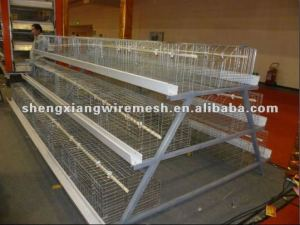 three layer poultry cages