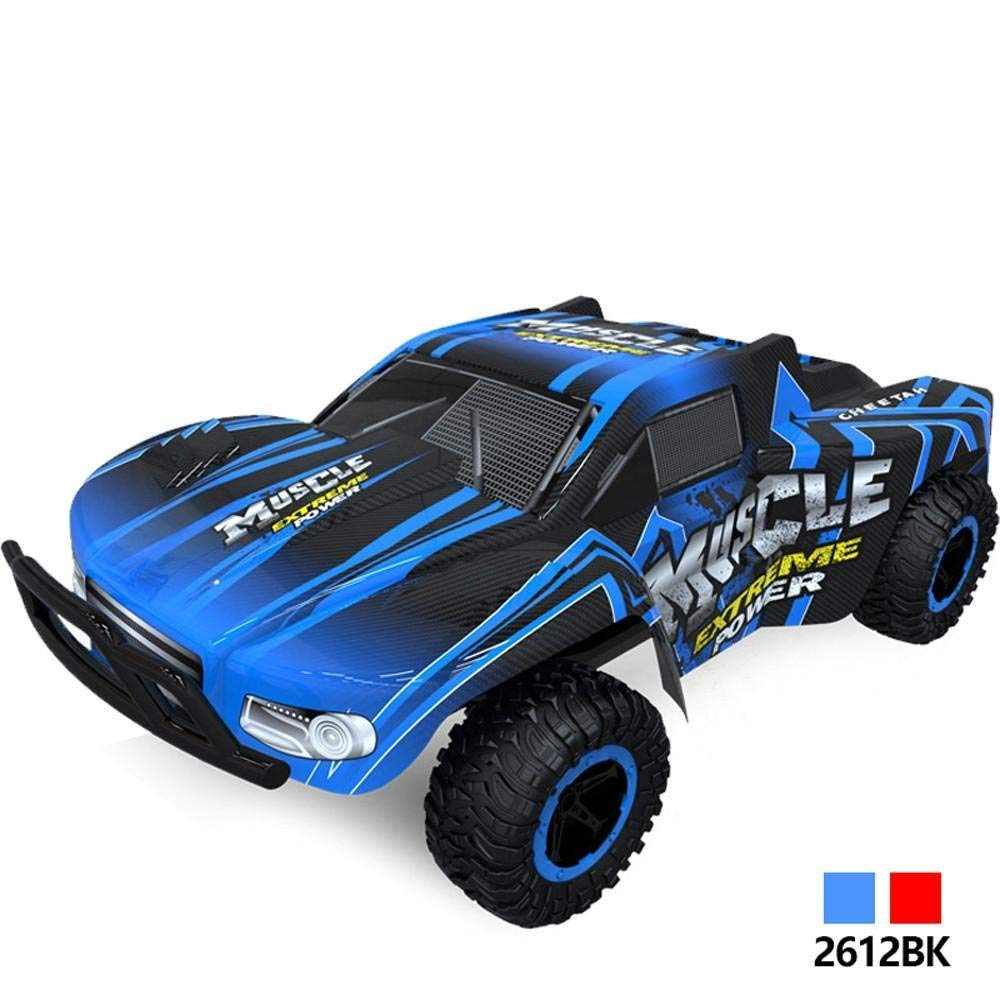 Outsta Radio Remote Control Car, 1:16 Scale Car,2.4GHz High Speed RC Racing Car 4WD Remote Control Truck Off-Road Buggy Toys Truck Vehicle Electric Cars Gift for Boys (Blue)