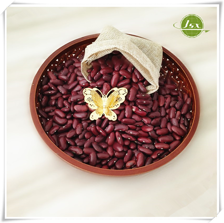 Jsx 200-220 Red Kidney Beans For Malaysia Market Hot Sale