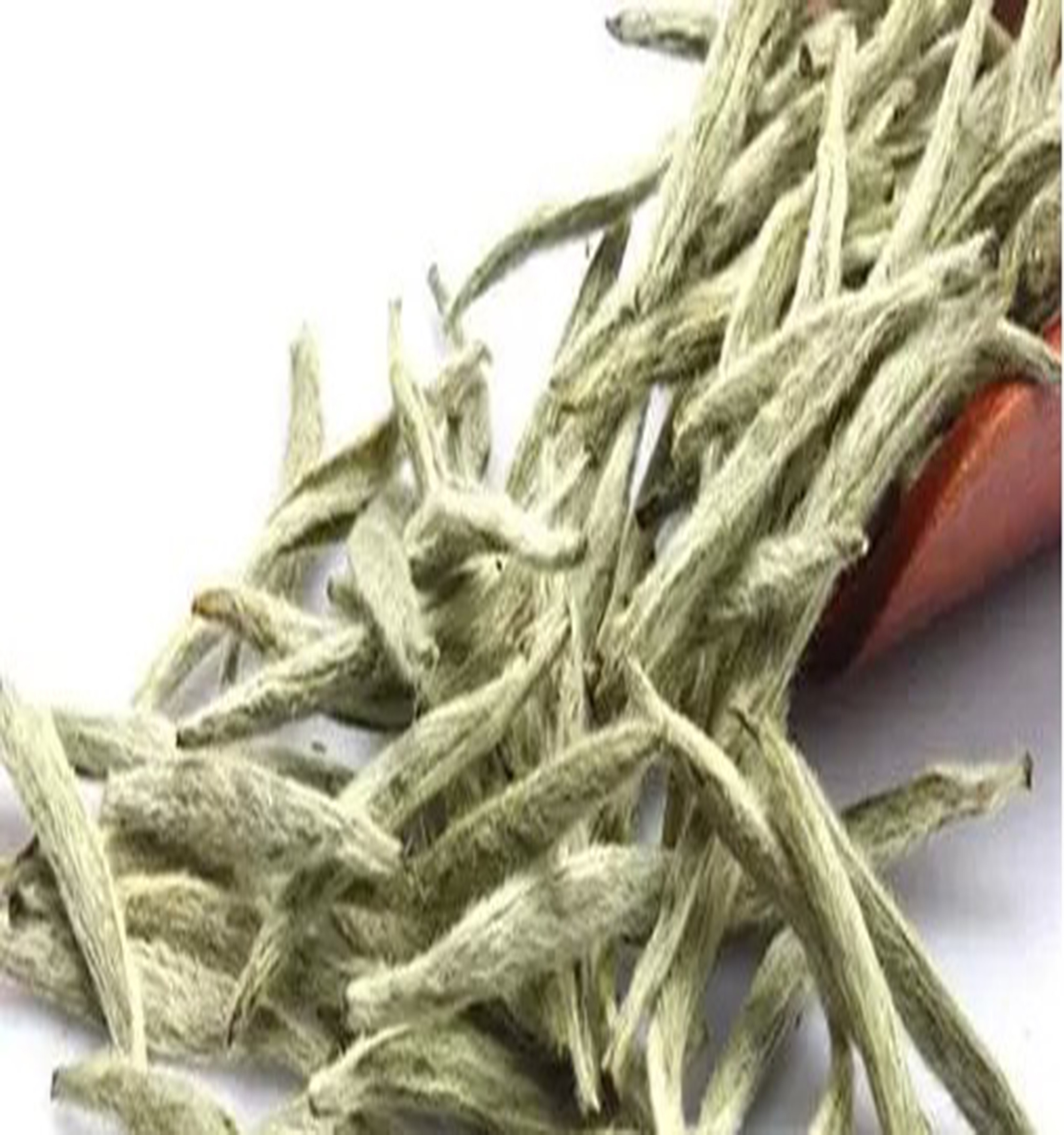 Popular selling Chinese Fuding White Silver Needle tea, Organic Baihao Silver Needle Tea - 4uTea   4uTea.com