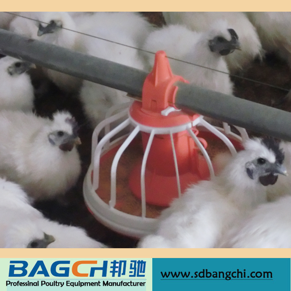 High Quality Complete Automatic Chicken Poultry Feeder